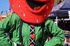 2014 Florida Strawberry Festival