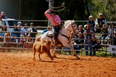 PCCA 2014 Trade Show and Ranch Rodeo