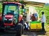 dsc02673-mixon-farms-blueberry-harvest-600x337