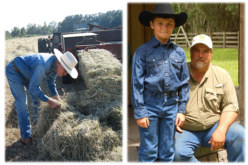 Florida roots: One family's history in Florida hay