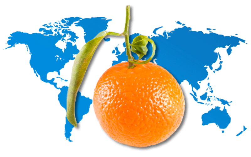 @griTech: In search of a formula that will put Florida tangerines on the map