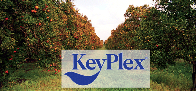 KeyPlex in the business of plant health
