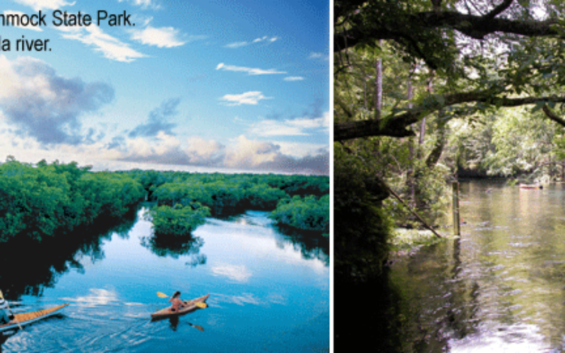 Florida recreation at its greenest