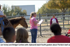 Fourth-grade introduction to beef cattle