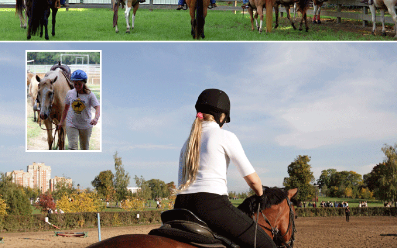 Developing the future of horsemanship