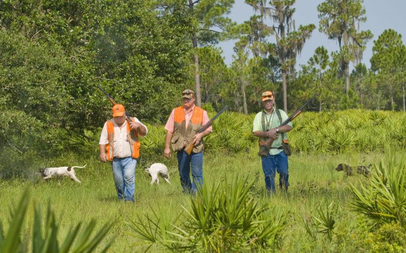 Bows vs. Guns: Choosing Your Personal Hunting Style