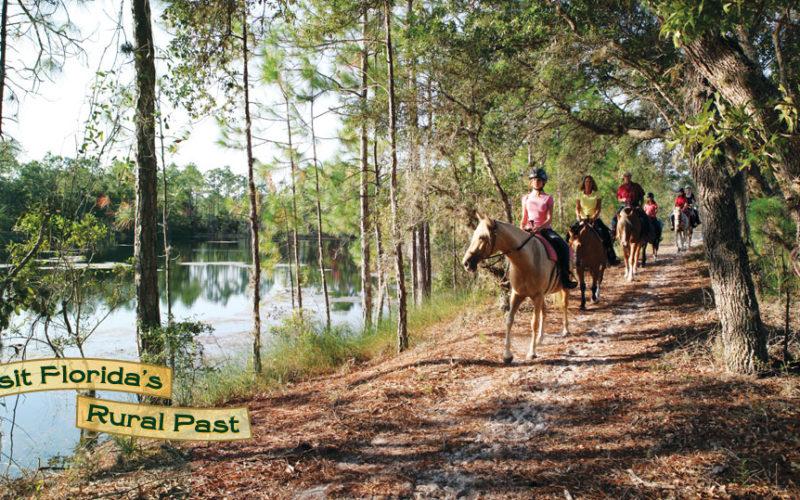 Trail Riding Through History