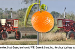 All in the Family of Citrus Growers