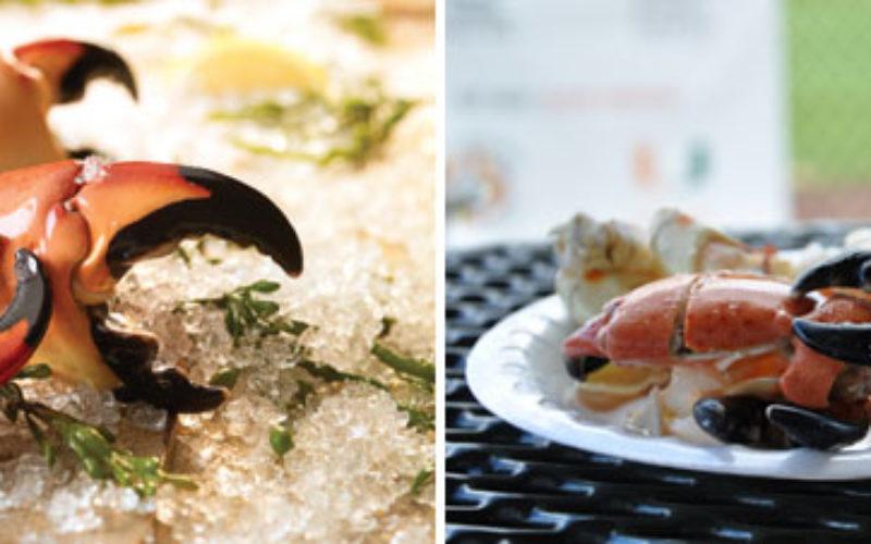 Recipe Spotlight: Four ideas for 'crabby' meals