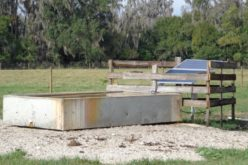Solar Pumps for Watering Cattle