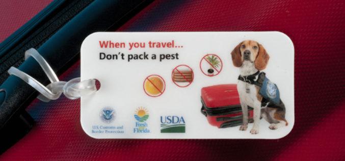 Commissioner's AgriCorner: 'Don't Pack a Pest' Campaign