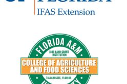 Commissioner's AgriCorner: Celebrating 100 years of extension