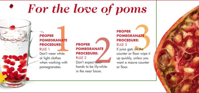 Recipe Spotlight: Proper Pomegranate Procedure 101