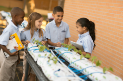 Kids learn agriscience through the study of STEM