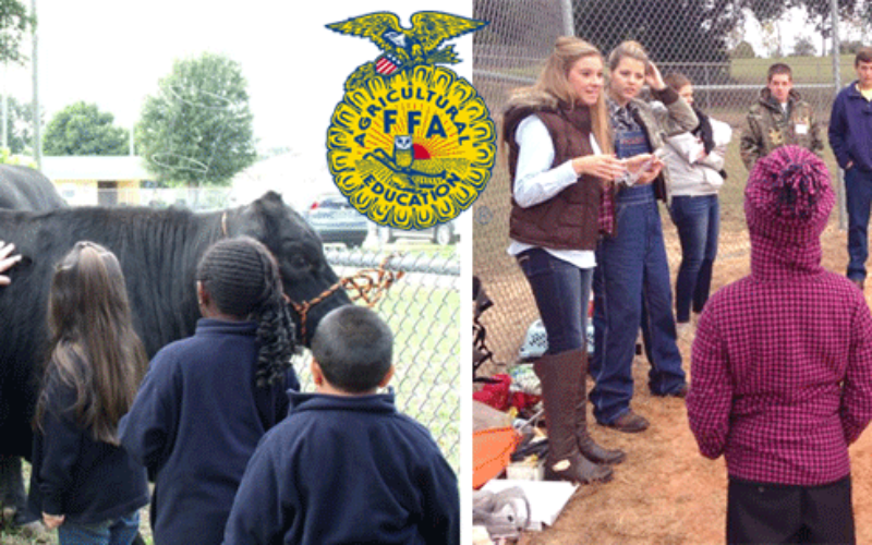 FFA Corner: Ag Time with Abby