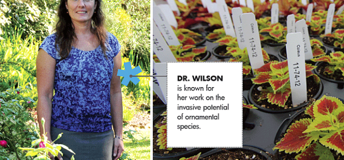 Meet Dr. Sandy Wilson of UF/IFAS