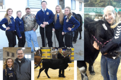 Ag Time with Abby: Day-by-day highlights from the Polk County Youth Fair