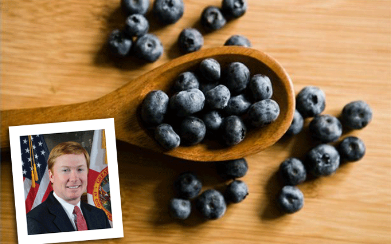 Commissioner's AgriCorner: A spoonful of facts and forecasts for Florida blueberries