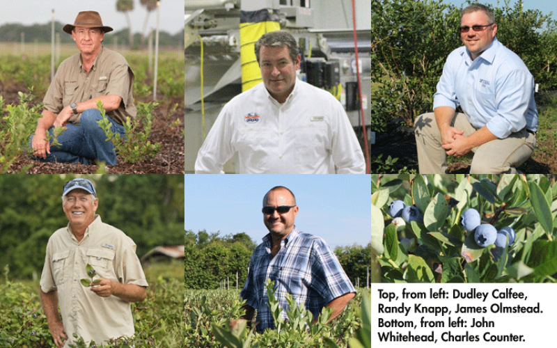 Growers grapple with unique encounters amidst a good harvest