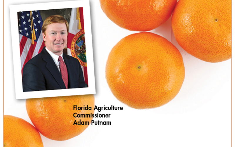 Commissioner's AgriCorner: Employing every tool in the toolbox to find a solution for HLB