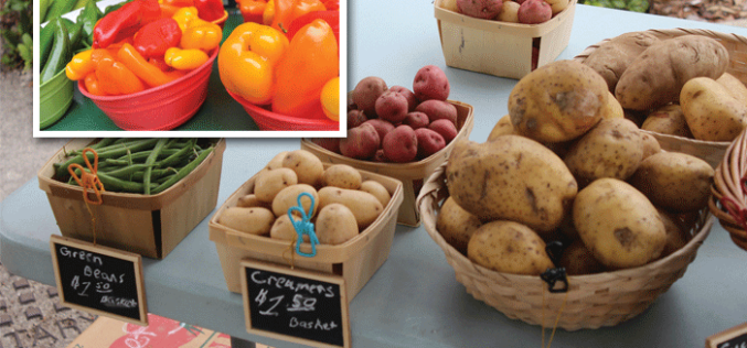 Recipe Spotlight: What's cooking this fall from your local farmers' market