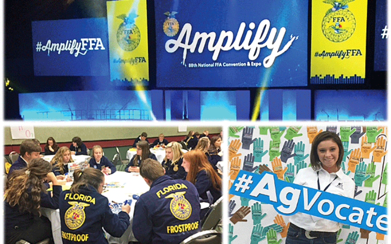 Ag Time with Abby: FFA wants to amplify on ag causes and careers