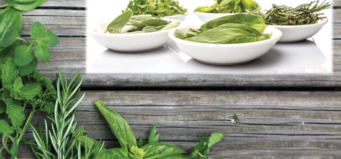 Recipe Spotlight: Cooking with herbs to dress up any plate