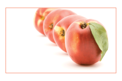 Recipe Spotlight: Sweet satisfaction of a Florida peach