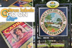 Citrus labels go on tour: Historic brands make a comeback in the region