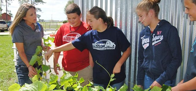 A model ag program for Polk