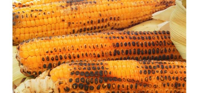 Grilling season, Central Florida corn season blend together well