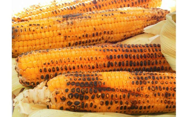 Grilling season, Central Florida corn season blend together well