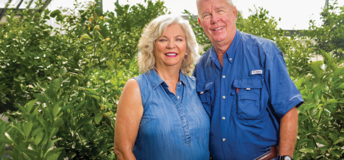 Annual Citrus Report