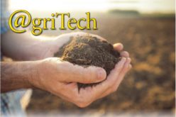 Looking to the Soil for Solutions in the Fight Against Greening