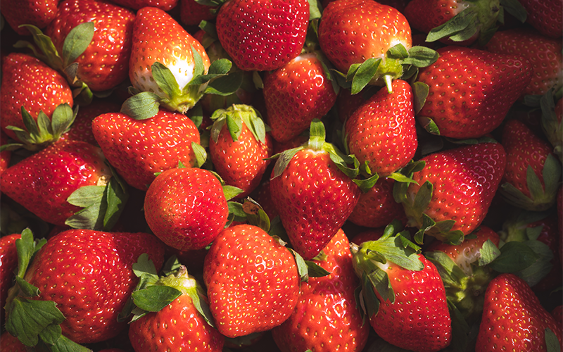 Strawberry AgriUpdate