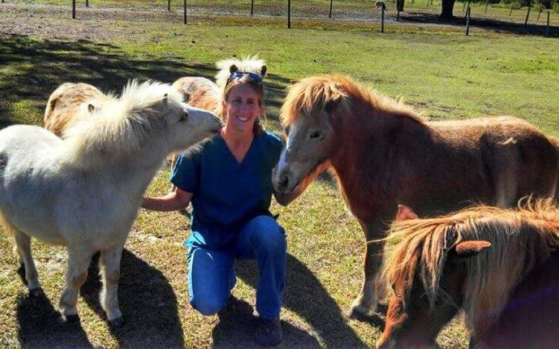Dr. Katie Hennessy is All Business When it Comes to Helping Animials