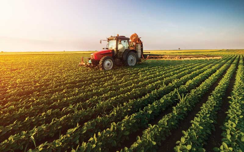 Agricultural Crimes Unit Protects Polk's Multi-Billion Dollar Industry