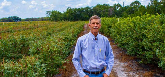 David Weber is No Stranger to Blueberries