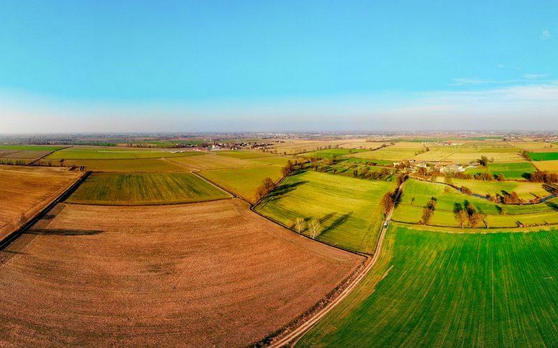 Drone's-Eye View