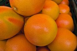 Sunnier Skies for Citrus