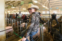 The Polk County Youth Fair is Still Happening